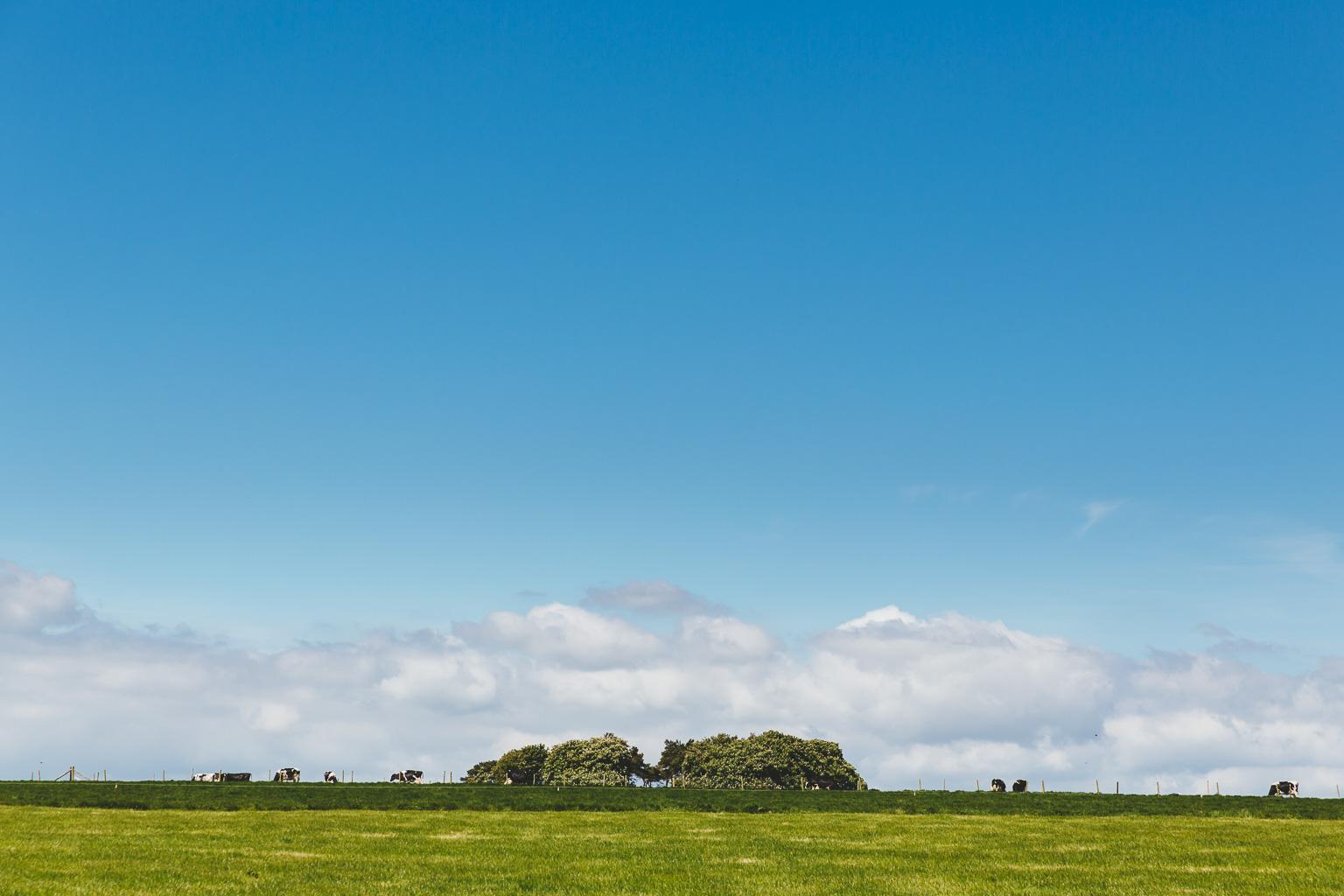 Dorset-photographers-00006