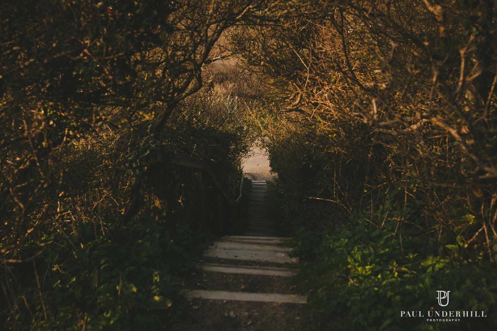 Dorset walks