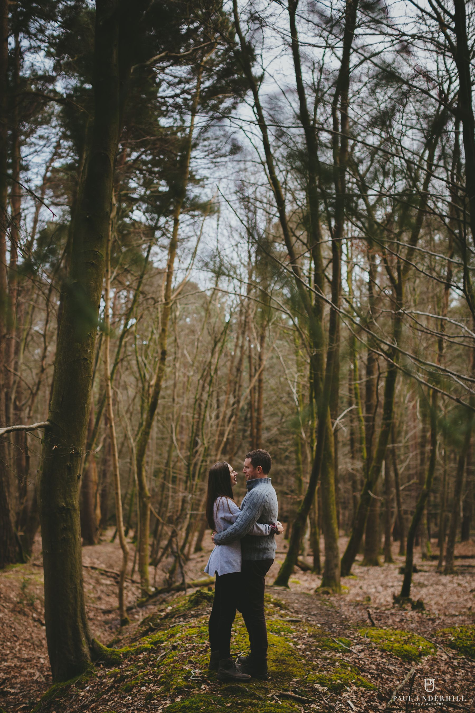 New Forest photographers