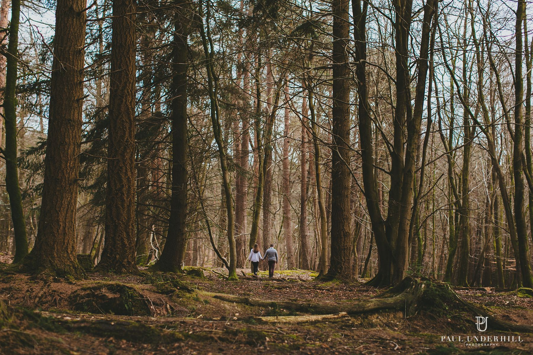 New Forest pre-wedding photography