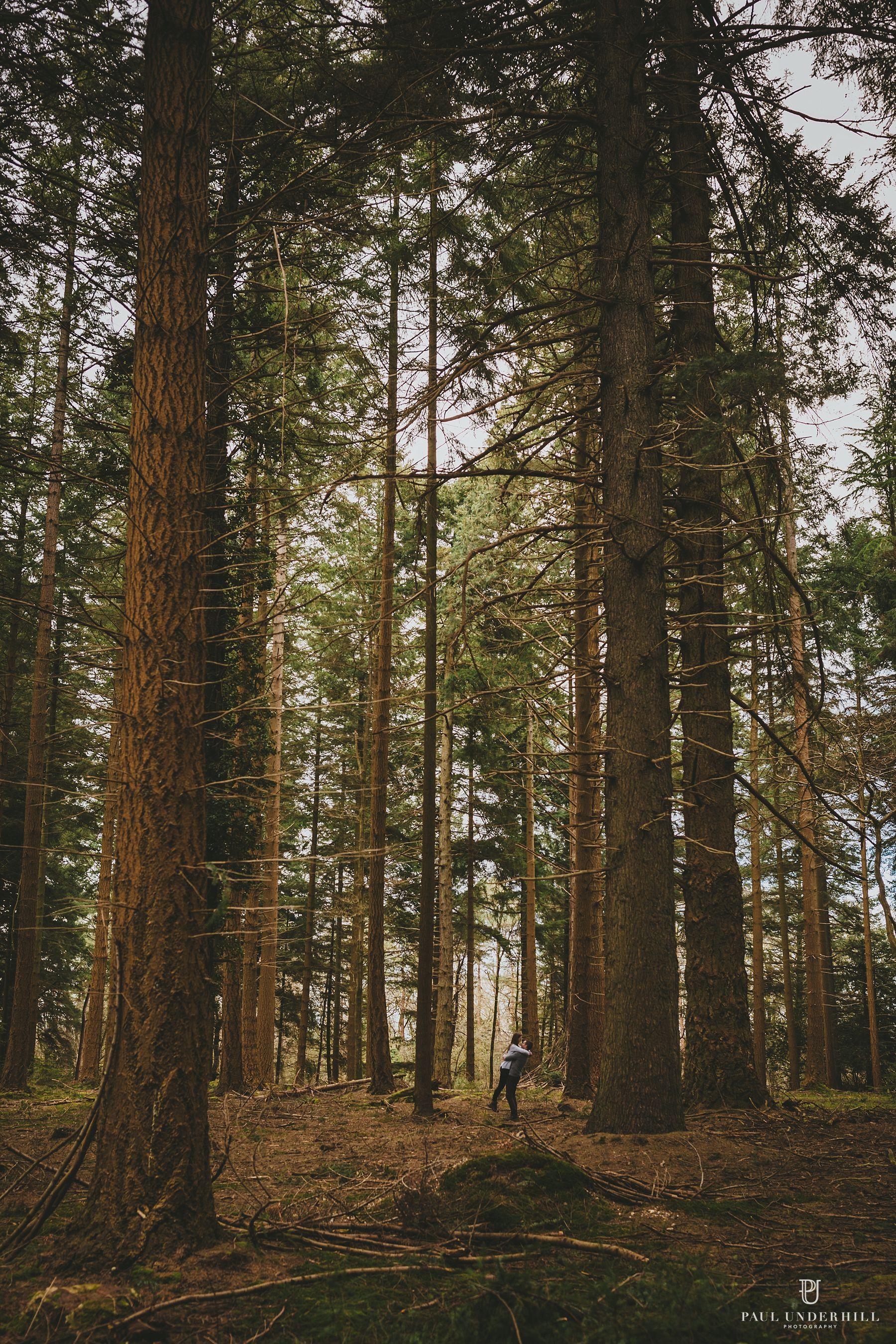 Wedding photographers Hampshire New Forest