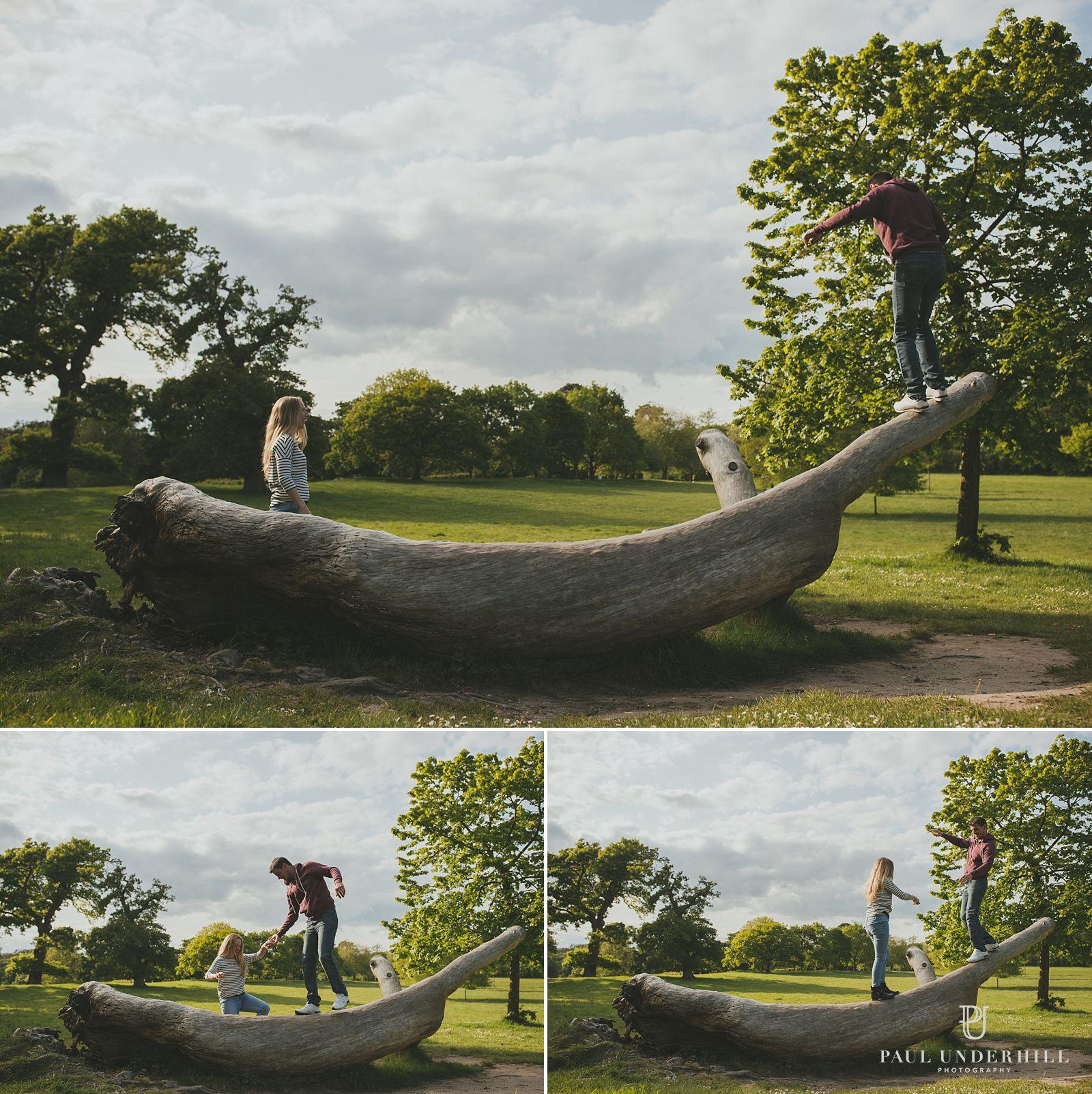 Upton Country Park gardens