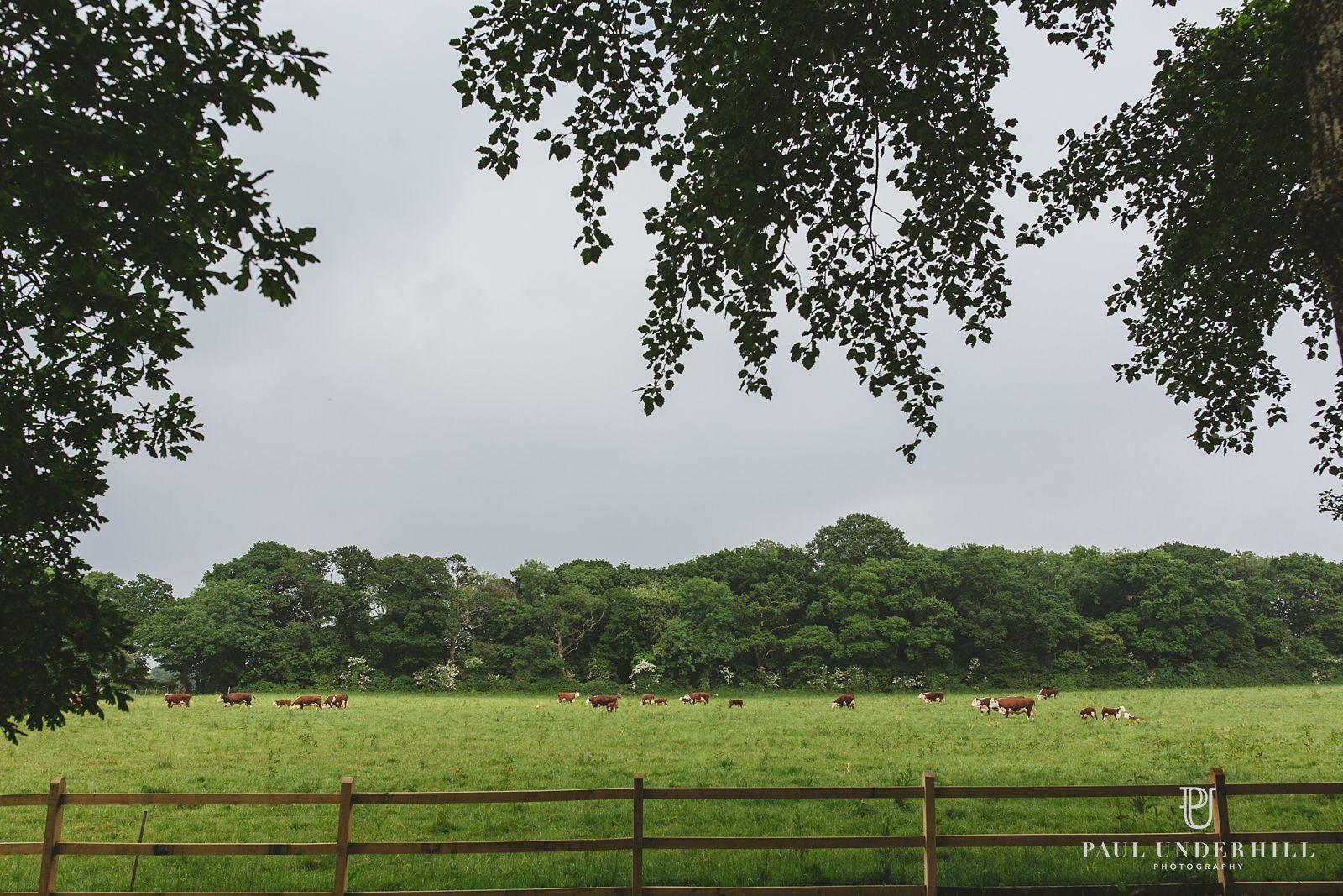 Stockbridge Farm Barn fields