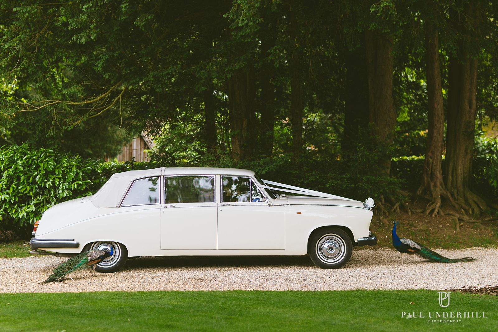 Wedding car at Larmer Tree gardens
