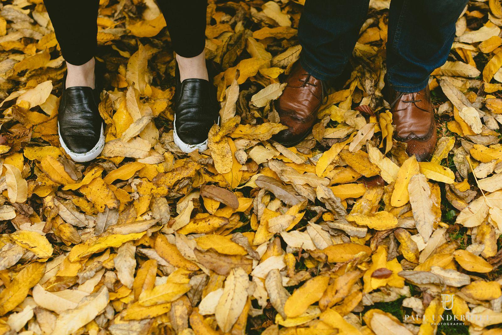 autumn-at-larmer-tree