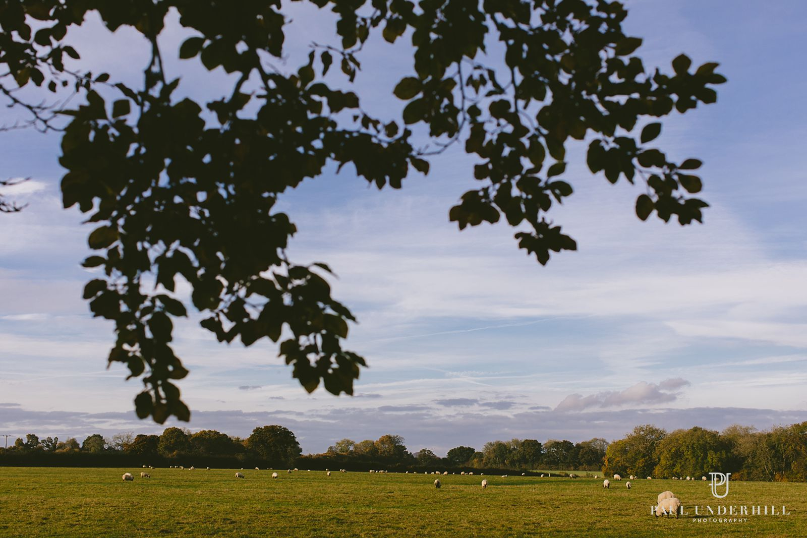 larmer-tree-gardens-wiltshire