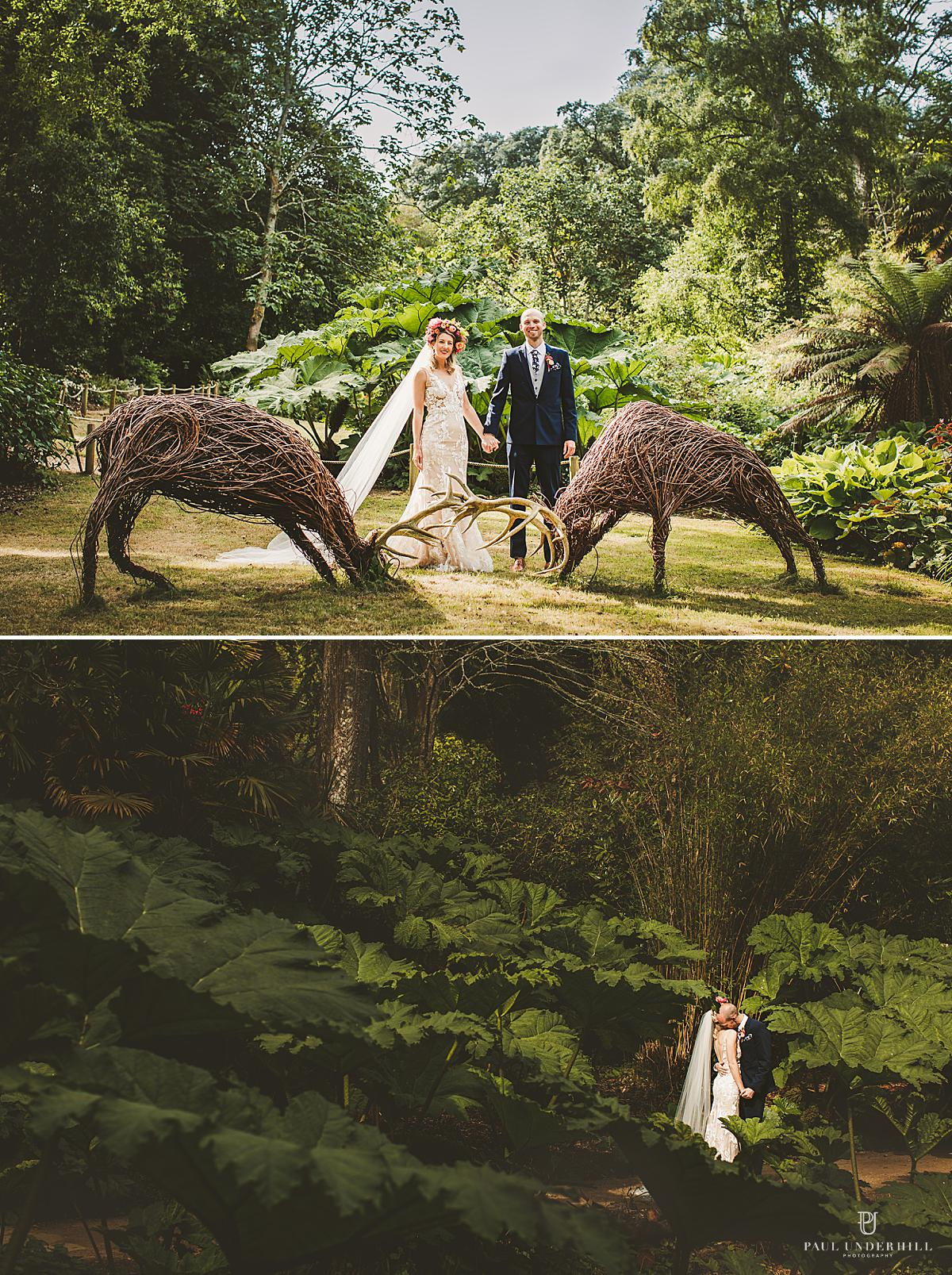 Abbotsbury Subtropical Gardens wedding photography